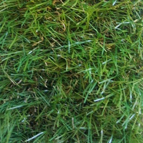 FTW Standard Artificial Grass 18mm