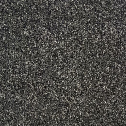 Ftw Ecotwist Carpet Dark Grey Flooring Trade Warehouse