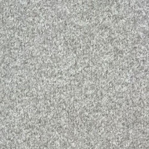 FTW EcoTwist Carpet - Silver Grey