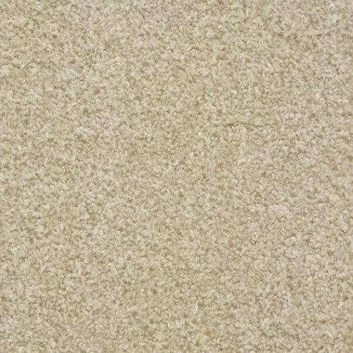 FTW EcoTwist Carpet - Pebble Cream