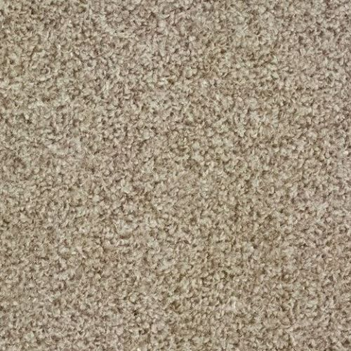 FTW EcoTwist Carpet - Warm Beige
