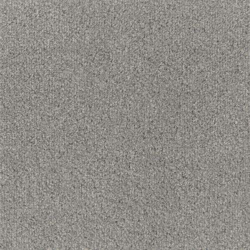 FTW Modern Carpet - Dusky Grey