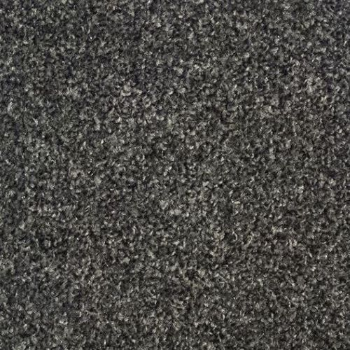 FTW EcoTwist Carpet - Dark Grey